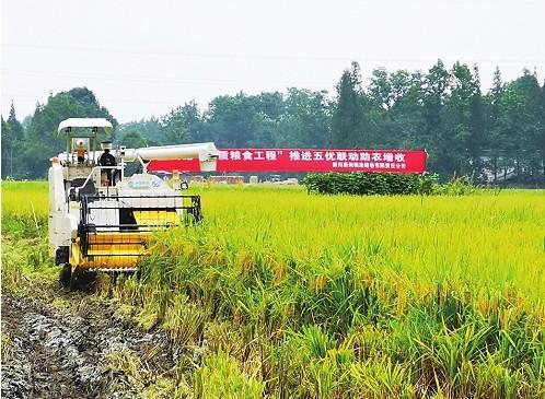 四川移动携手中国移动逐步实现对全区所有纳入网络农...