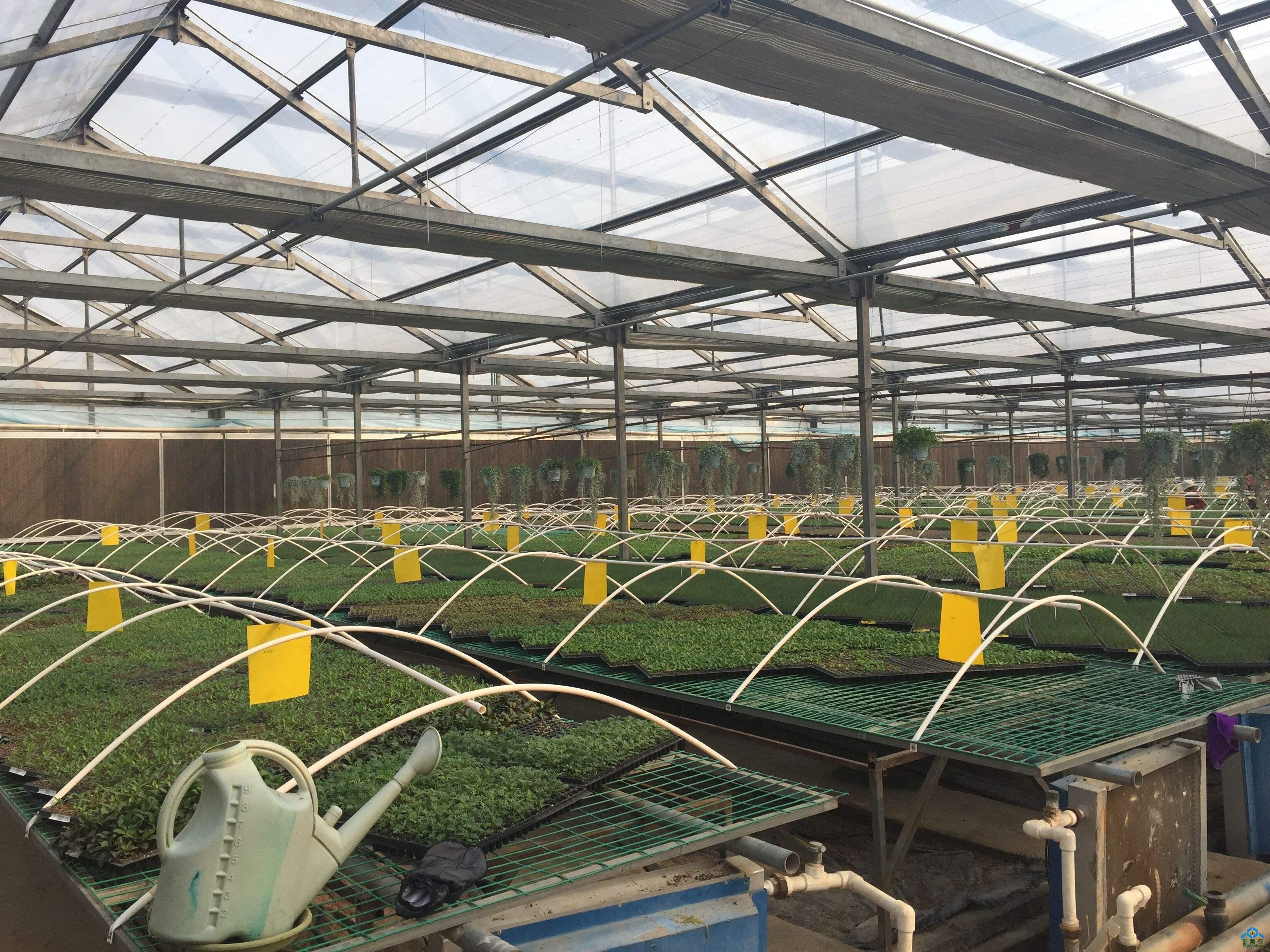 智能温室控制系统将成为推动智慧农业发展的重要力量