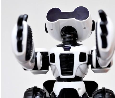 盘点各大机器人企业的发展现状