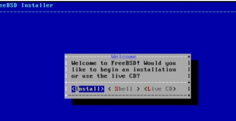 freebsd是什么系统_freebsd12安装教程