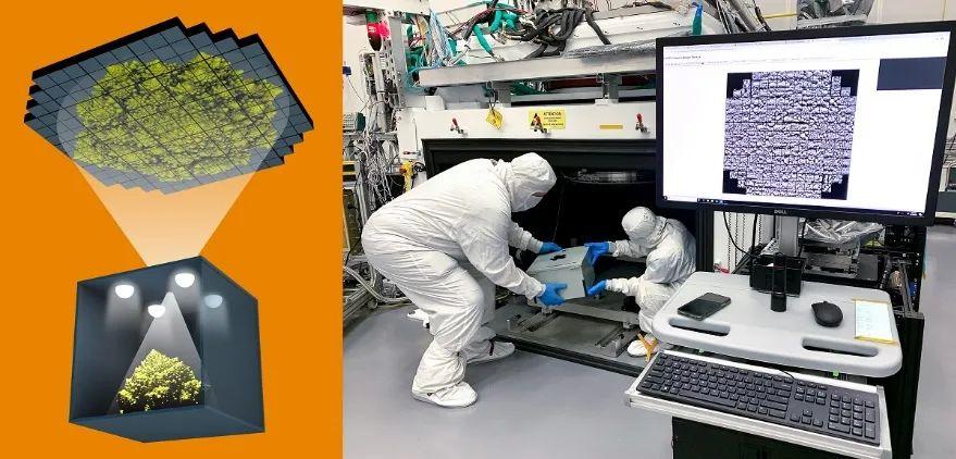 SLAC實驗室成功拍攝人類首張32億像素的花椰菜照片