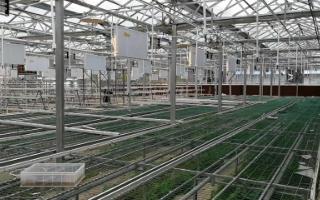 智能温室大棚控制系统有什么特点,它有哪些优势