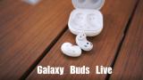 三星Galaxy Buds Live「豬腰子」用起來怎麼樣?
