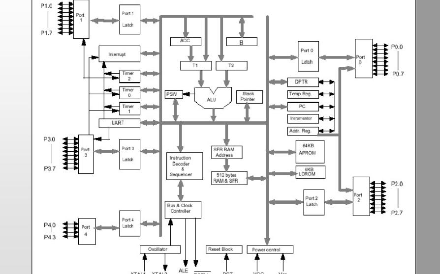 如何进行DSP的软件编程及使用算法实现的学习教程说明