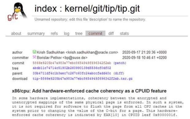 Linux5.10支持新的AMD安全存储加密功能