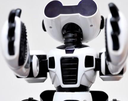 中国在机器人领域的发展水平如今发展到何种程度?