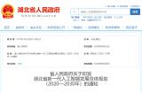 湖北省发布新一代人工智能发展总体规划 (2020—2030年)