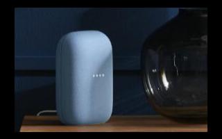 Google似乎正计划提供两种不同颜色的Nest Audio