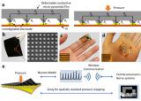 西安交大在电子皮肤领域取得新进展