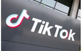 TikTok沿用了微信的方式,申请了禁止该禁令的初步禁令