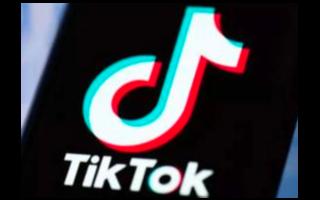 TikTok已提议成立一个由社交媒体公司组成的全球联盟