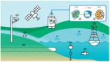 AI 如何应对水与环境领域的巨大挑战?