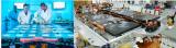 基于Ultium电池打造的通用汽车电动车都将标配...