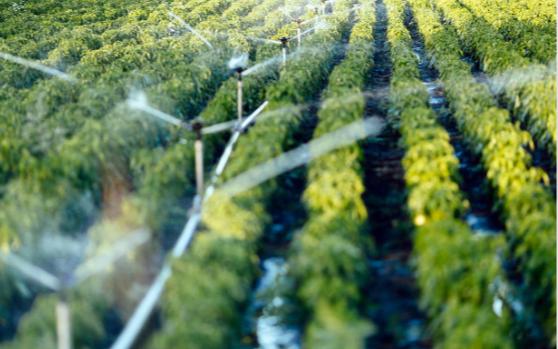 小型自动气象站的应用将有助于推广高效节水农业技术