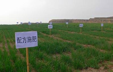 农林服务检测仪器,土肥仪的作用是什么