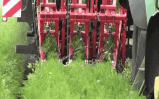 智慧農業:自動化的胡蘿卜收割機,這也太厲害了吧