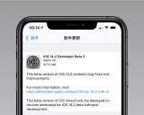 体验iOS 14.2 Beta 3系统