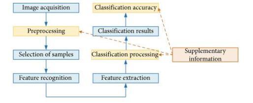 機器學習在遙感高光譜圖像中的應用