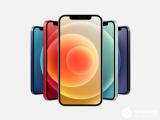 iPhone12预订量占比达43%  iPhone12中国预定量三天超15万部