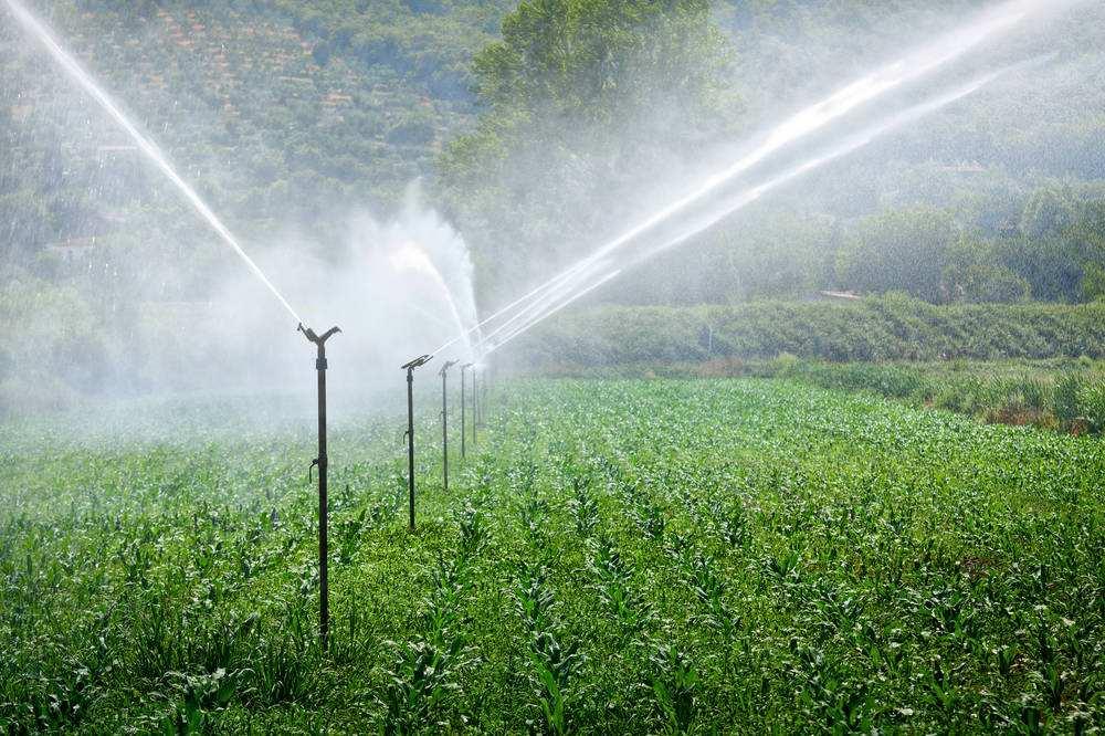 为什么要应用水肥一体化,它带来的好处有哪些