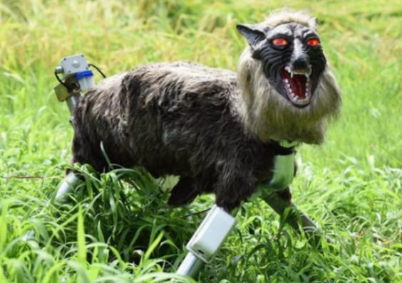 神奇操作:日本制造两眼发红光的惊悚机器人,吓跑熊等野生动物