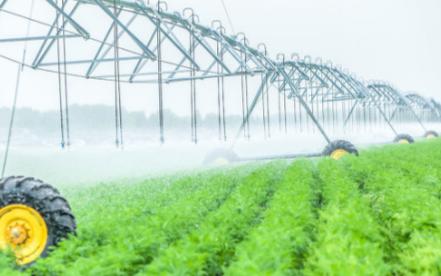 浅谈传感器技术在智慧农业领域中的应用