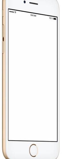 华邦电成为iPhone新机的NOR Flash芯片独家供货商