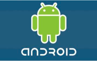 Android 11的错误在某些界面中隐藏了部分屏幕