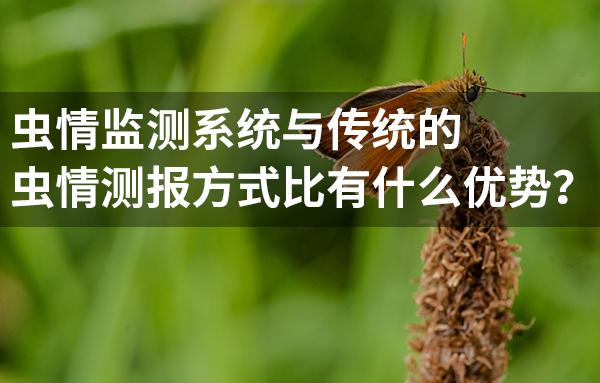 虫情监测系统对比传统的虫情测报方式有什么优势