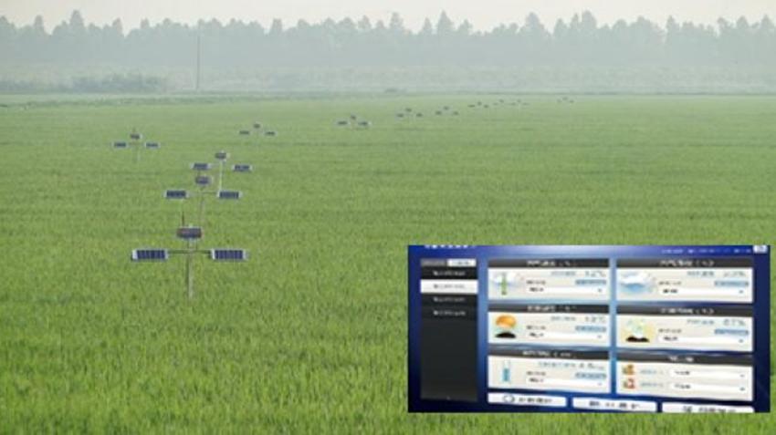 NB-IoT在智能农业中的示范作用是怎样的