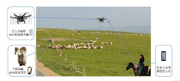 RFID无人机放牧智能化管理系统的详细介绍