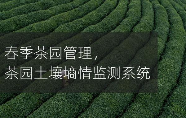 一种基于GPRS技术的茶园土壤墒情自动监测系统