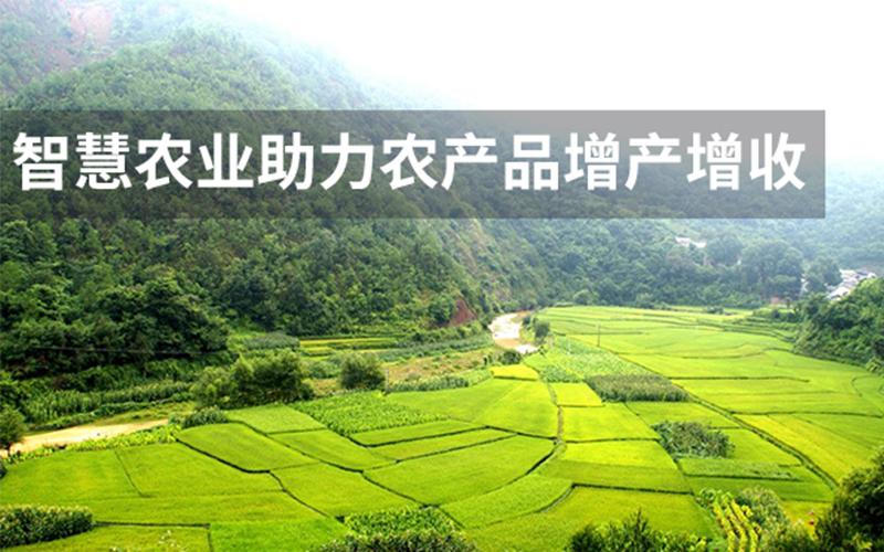 智慧农业将如何助力农产品的增产增收