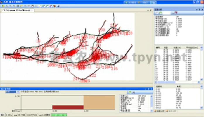 通过根系分析仪研究不同灌溉方法根系成长情况