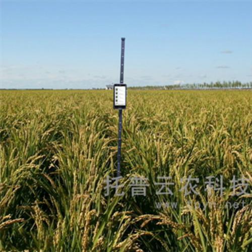 玉米株高测量仪与传统方法的对比,它有哪些优势