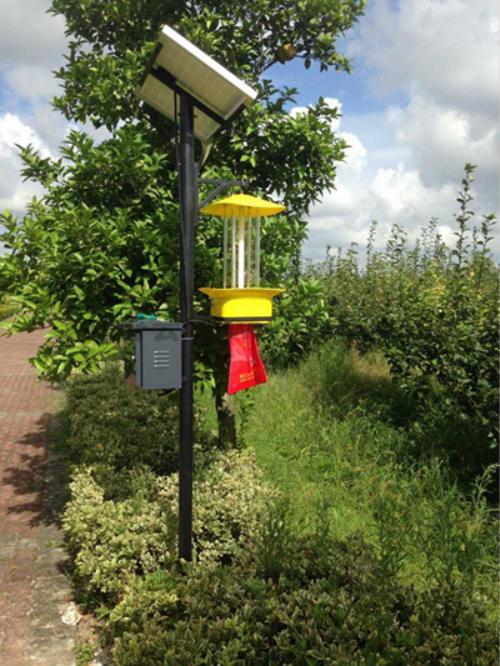 太陽能殺蟲燈對比普通殺蟲燈,它具有什么優勢