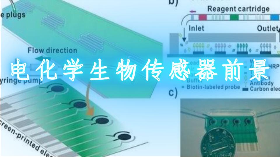 电化学生物传感器前景