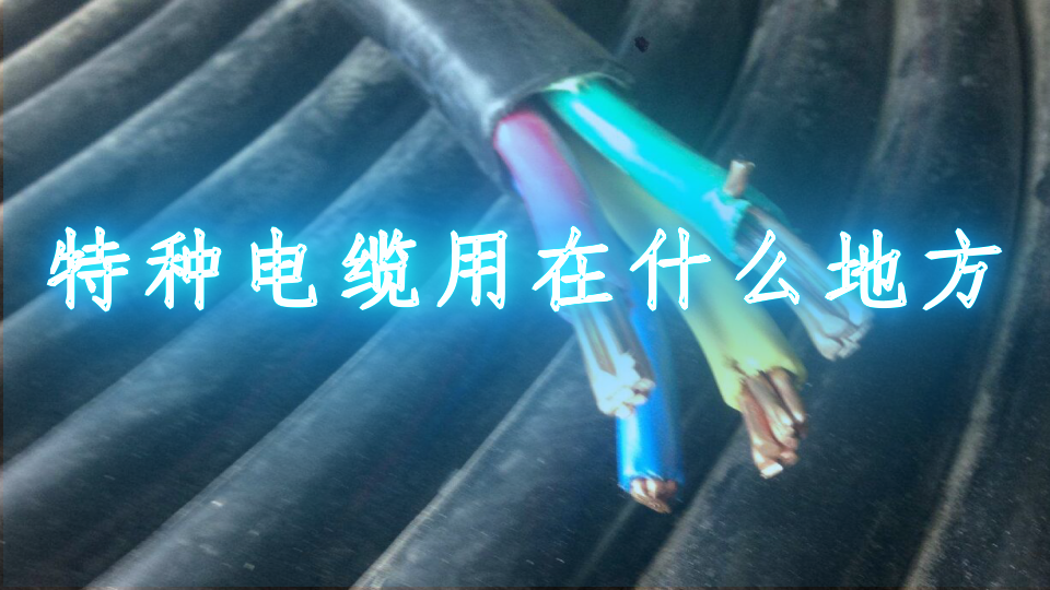 特種電纜用在什么地方