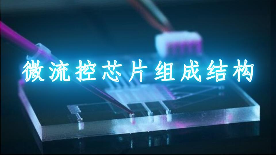 微流控芯片組成結構
