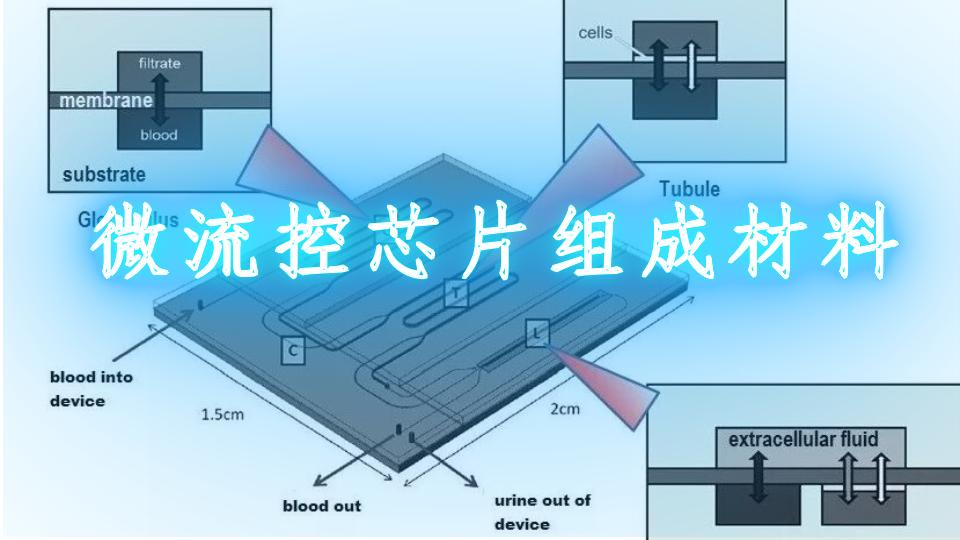微流控芯片組成材料