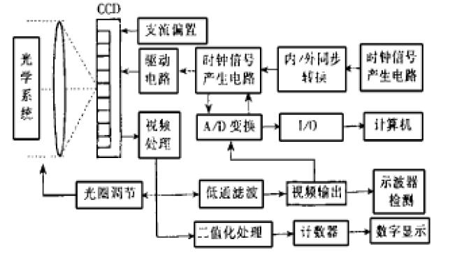 ctp系统的原理_消化系统