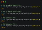 如何写出让CPU执行更快的代码?