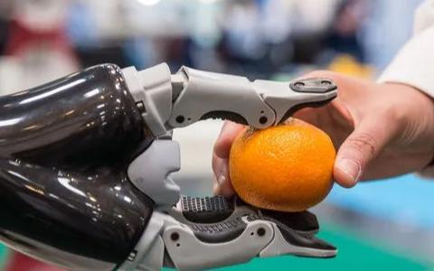 专业和个人服务机器人的销售额将继续保持强劲增长