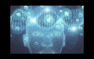 今年全球在人工智能系统上的支出将超500亿美元