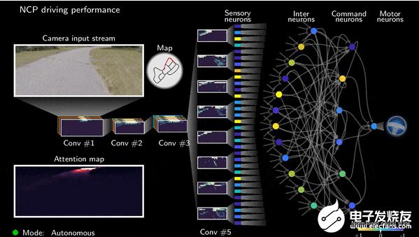 打造自动驾驶控制系统需要多少个神经元?
