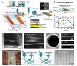 留学生联合发明比头发细一百倍的3D打印微纳米纤维传感器