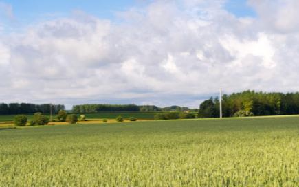 農業小氣候觀測設備能自動地觀測與存儲氣象觀測數據