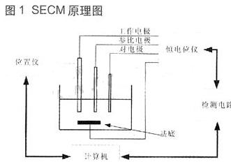 基于ARM微控制器和L298步进电机控制器实现探...