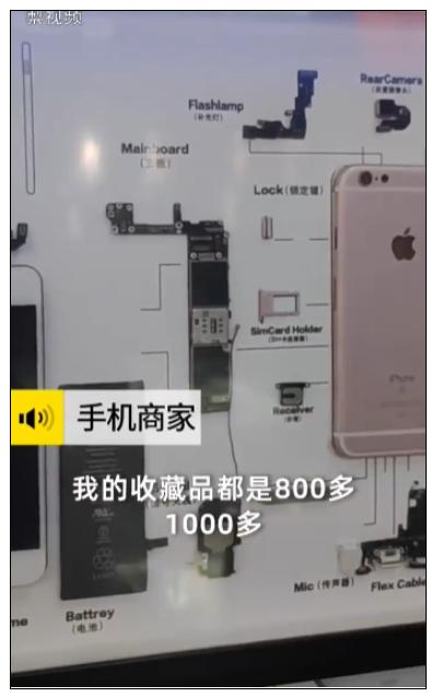 iPhone4被制成标本售卖