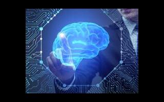 受蛲虫大脑启发构建AI系统,利用神经元控制车辆